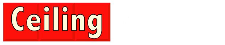logotipo ceiling renover limpieza de techos madrid